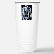 Human cardiovascular sy Travel Mug