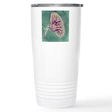 Kidney blood supply Travel Mug