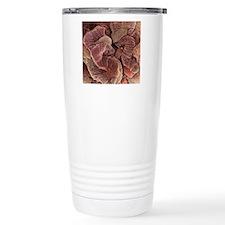 Kidney podocyte cells,  Travel Mug