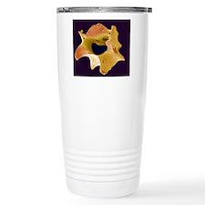 Vertebra, SEM Travel Mug