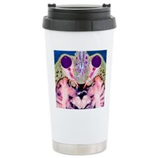 Vision and the brain, M Travel Mug