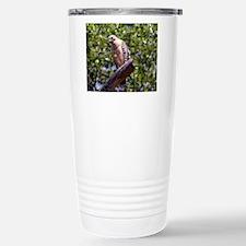 Red Shouldered Hawk Travel Mug