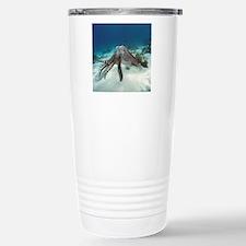 Broadclub cuttlefish Travel Mug