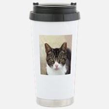 Tabby Cat Stare with Gr Stainless Steel Travel Mug