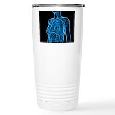 Female anatomy, artwork Travel Mug