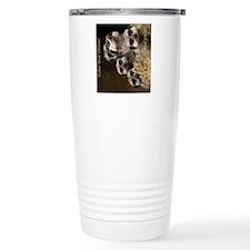 Follow Your Dreams Travel Mug