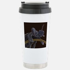 Head louse, SEM Stainless Steel Travel Mug