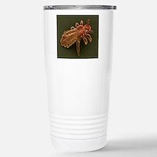 Head louse, SEM Stainless Steel Travel Mug