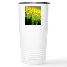 200248437-001 Travel Mug