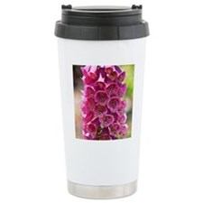 pink foxglove Travel Mug