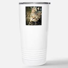 Domestic Cat Stainless Steel Travel Mug