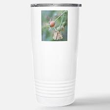 Close-up of rose hip wi Travel Mug