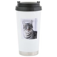Tabby gray cat and gree Travel Mug