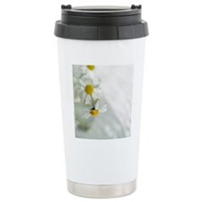 White daisies in glass  Travel Mug