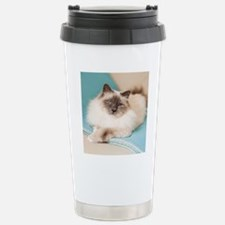 White sacred birman cat Stainless Steel Travel Mug