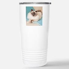 White sacred birman cat Travel Mug