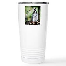 Lemur kata (Lemur catta Travel Coffee Mug