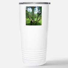 Tree69x70Sf Stainless Steel Travel Mug