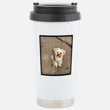 Joey Stainless Steel Travel Mug
