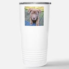 Puppy Dog Eyes Travel Mug
