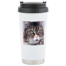 Big Face Animal - Maine Travel Mug