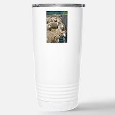 Close up Horned Dorsets Travel Mug