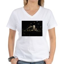 The Singapore Merlion At Night Shirt