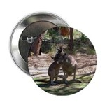 kangaroo mum tickles me Button