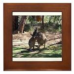 kangaroo mum tickles me Framed Tile