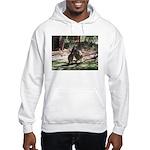 kangaroo mum tickles me Hooded Sweatshirt