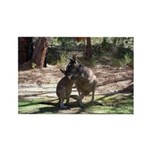 kangaroo mum tickles me Rectangle Magnet