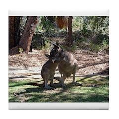kangaroo mum tickles me Tile Coaster