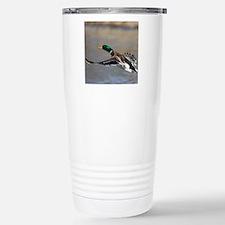 duck in flight Travel Mug