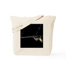 Spider, Stanley Park, British Columbia Tote Bag