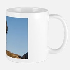 Famous dog breeds native to the areat.  Mug