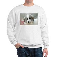 Cute Great pyrenees Sweatshirt