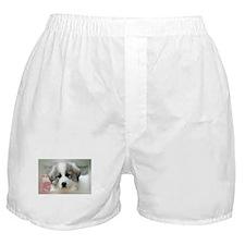 Unique Great Boxer Shorts