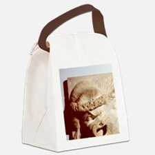 Tragic and comic theatrical masks Canvas Lunch Bag