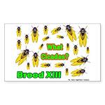 What Cicada Rectangle Sticker