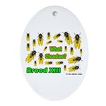 What Cicada Oval Ornament