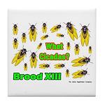What Cicada Tile Coaster