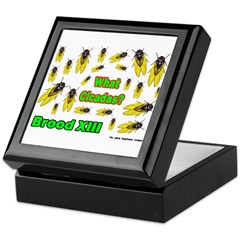 What Cicada Keepsake Box