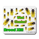 What Cicada Mousepad