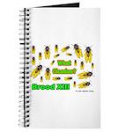 What Cicada Journal