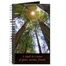 Ancient Friends, Journal