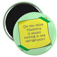 Madonna Refrigerator Magnet Magnets