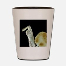 Ypical carved caribou antler figure, Cl Shot Glass