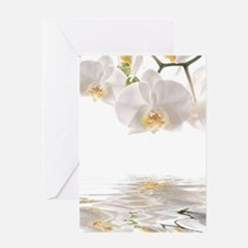 Orchids Reflection Greeting Cards