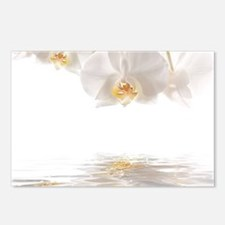 Orchids Reflection Postcards (Package of 8)
