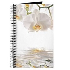 Orchids Reflection Journal